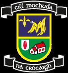 Bank of Ireland @ Work Kilmacud Crokes logo